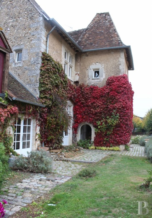 character properties France center val de loire seigneurial home - 3