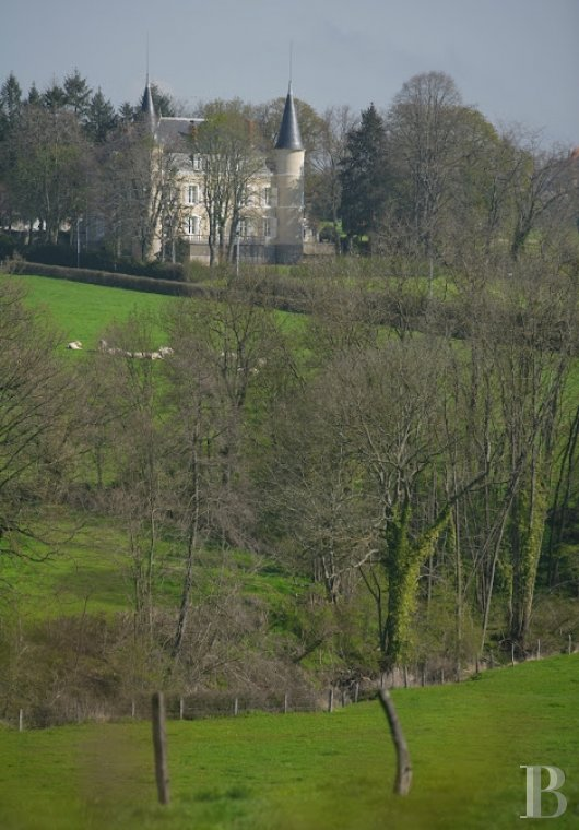 chateaux for sale France burgundy brionnais region - 4