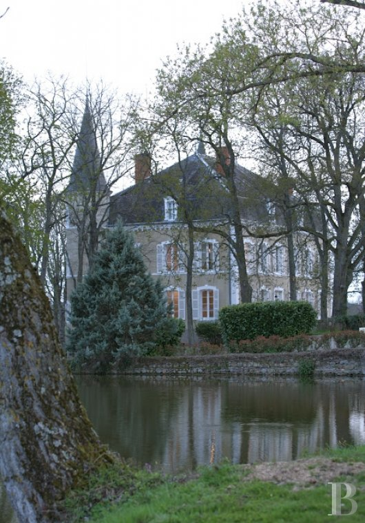 chateaux for sale France burgundy brionnais region - 7