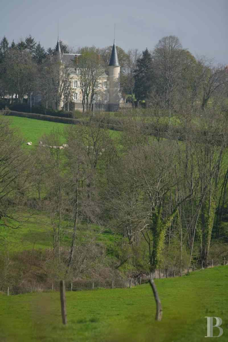 chateaux for sale France burgundy brionnais region - 4 zoom