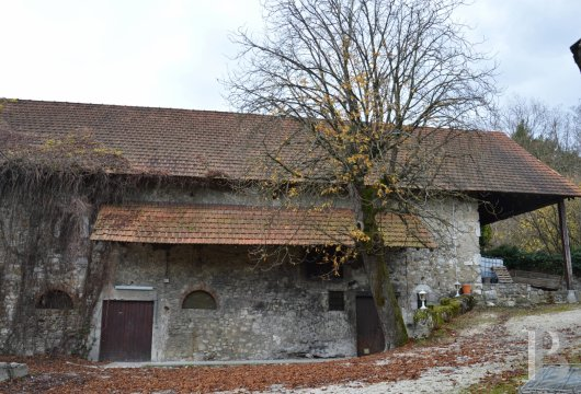 chateaux for sale France rhones alps chambery 18th - 14