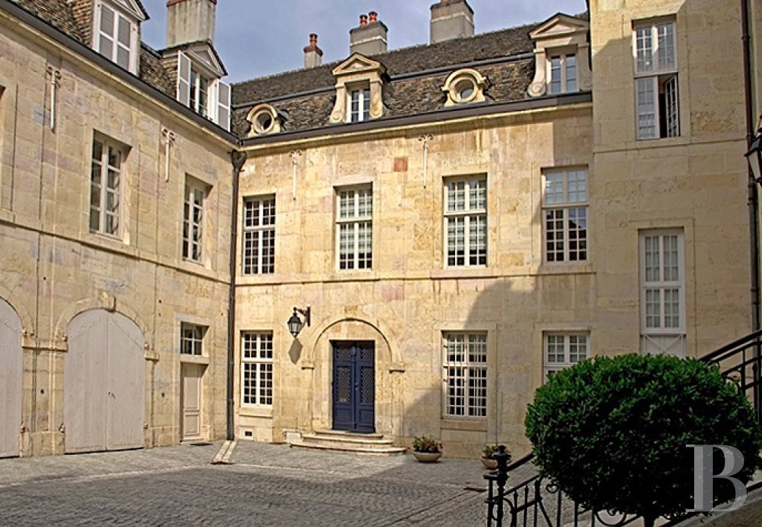 mansion houses for sale France burgundy flat garden - 1