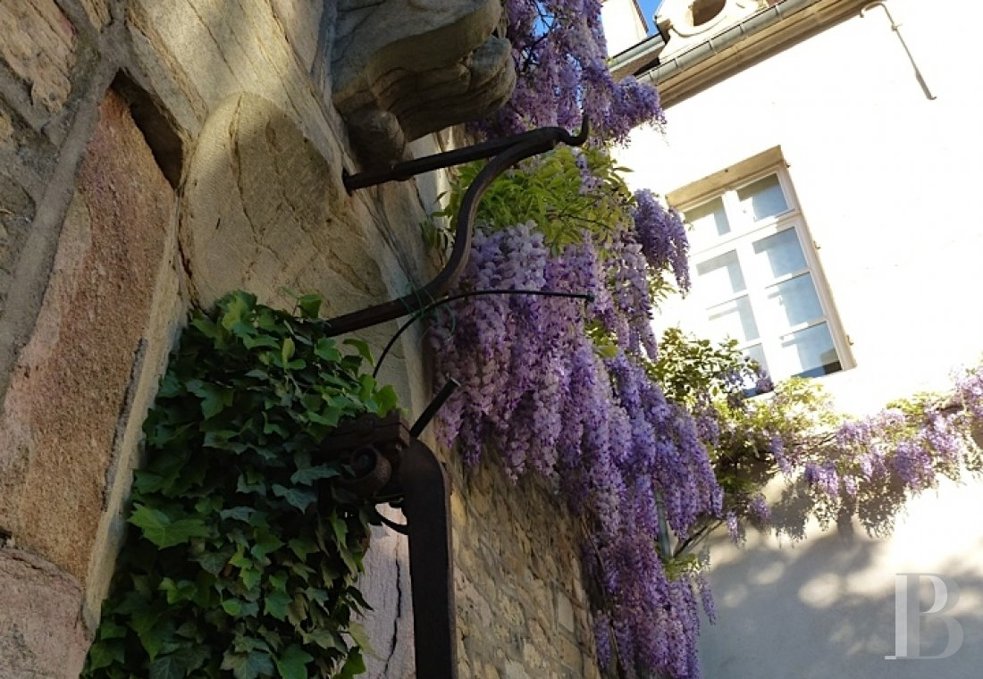 mansion houses for sale France burgundy flat garden - 16