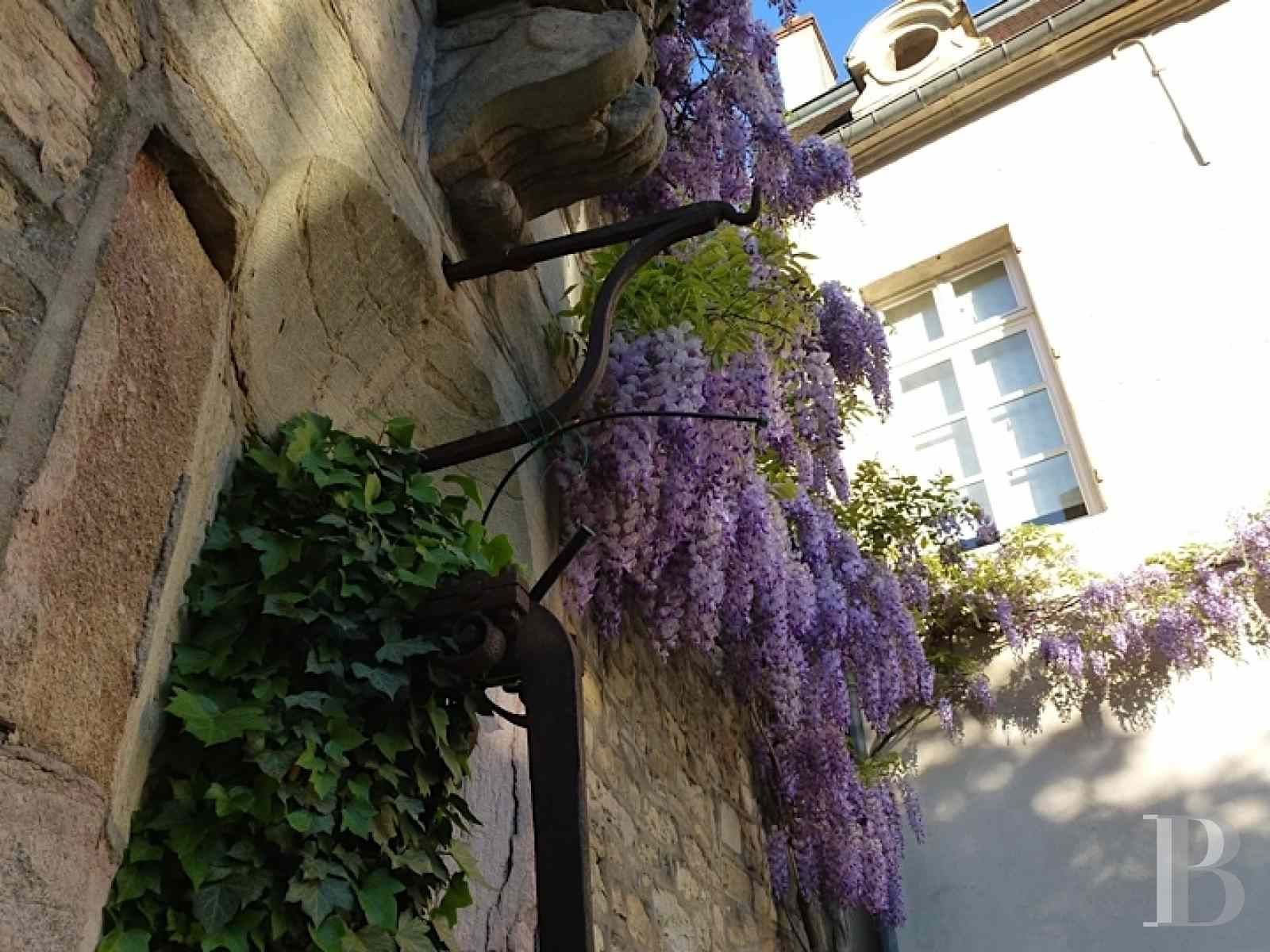 mansion houses for sale France burgundy flat garden - 16 zoom