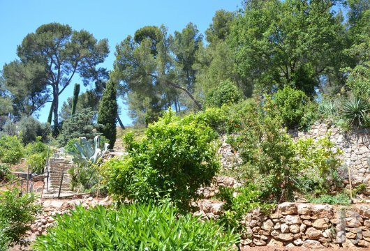 character properties France provence cote dazur   - 11