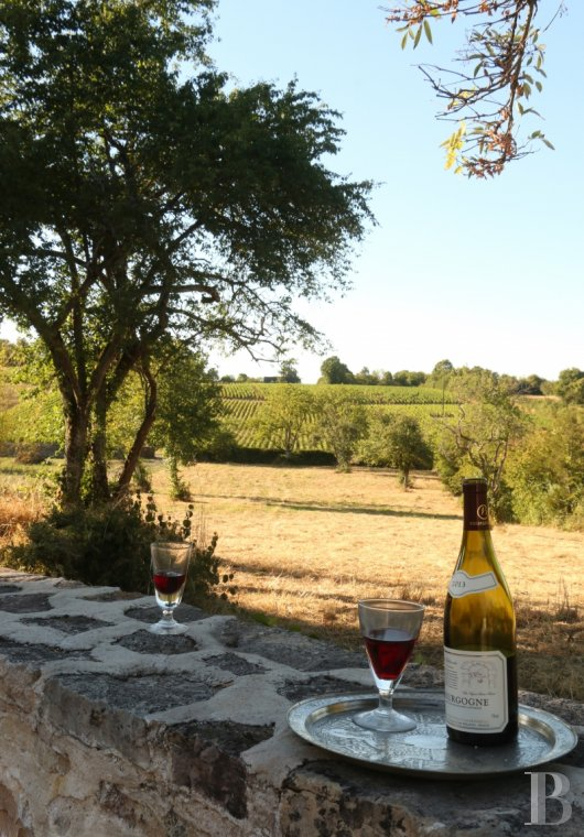 fA quiet refuge offering the perfect way to rediscover the joys of the countryside  amongst the famous vineyards of Burgundy between Beaune and Mercurey - photo N°3