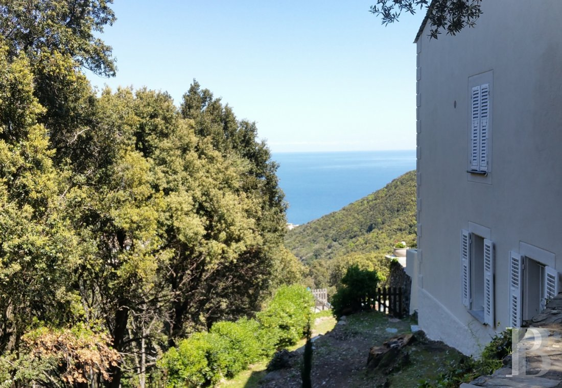 fA slice of Corsica to share with family and friends  on the hills of Bastia in San Martino di Lota - photo  n°7