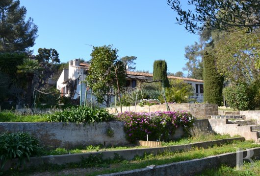 20th century architecture provence cote dazur woods olive - 2