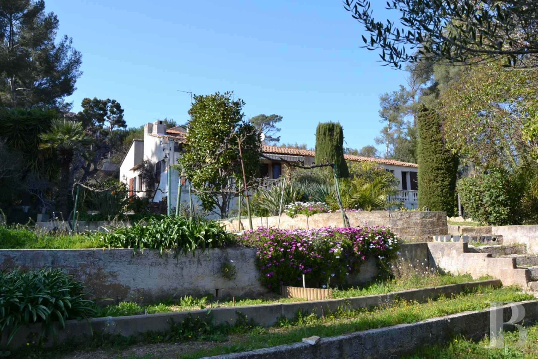 20th century architecture provence cote dazur woods olive - 2 zoom