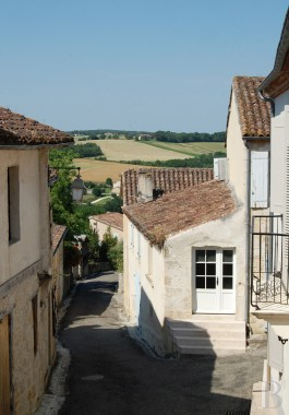 mansion houses for sale France midi pyrenees gers house - 17