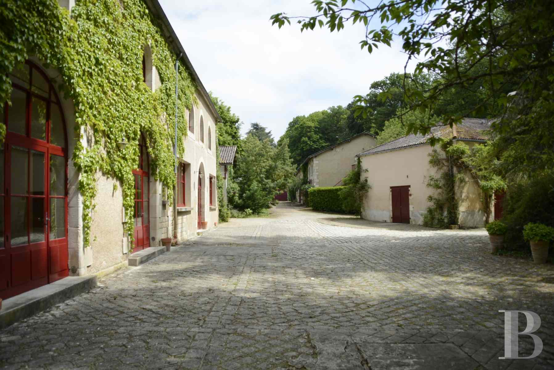 chateaux for sale France poitou charentes poitiers medieval - 22 zoom