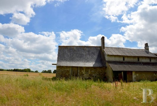 An old farmstead, awaiting restoration, in more than 18 ha dominating the  Loire, near to Saumur