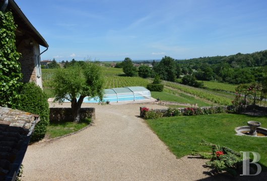 character properties France rhones alps vines beaujolais - 14
