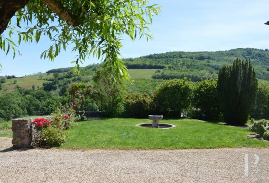 character properties France rhones alps vines beaujolais - 15