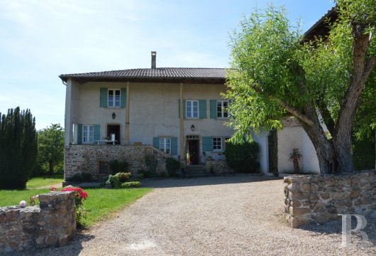 character properties France rhones alps vines beaujolais - 2