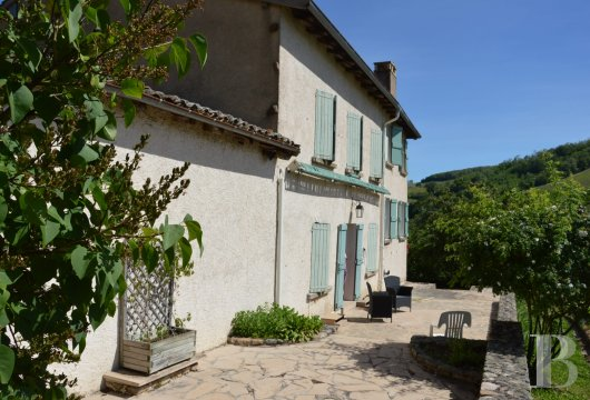 character properties France rhones alps vines beaujolais - 4