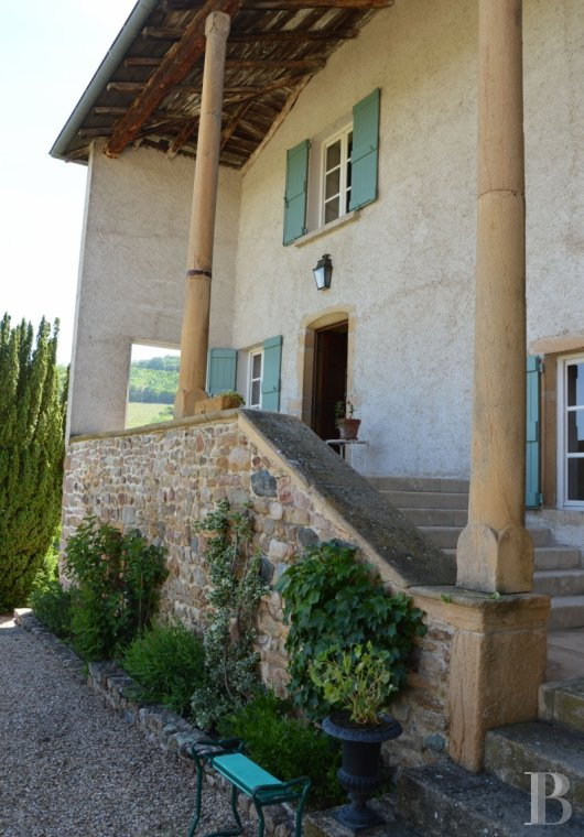 character properties France rhones alps vines beaujolais - 6