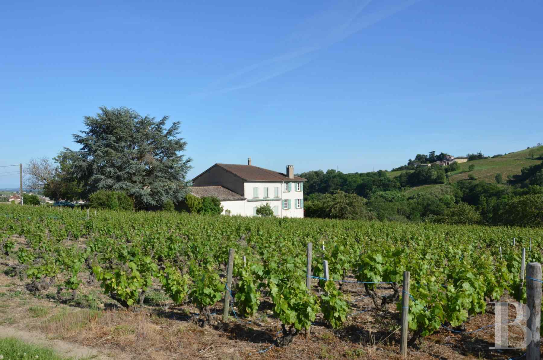 character properties France rhones alps vines beaujolais - 1 zoom