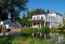 Character houses for sale - burgundy - Large mill with water rights -and electricity production