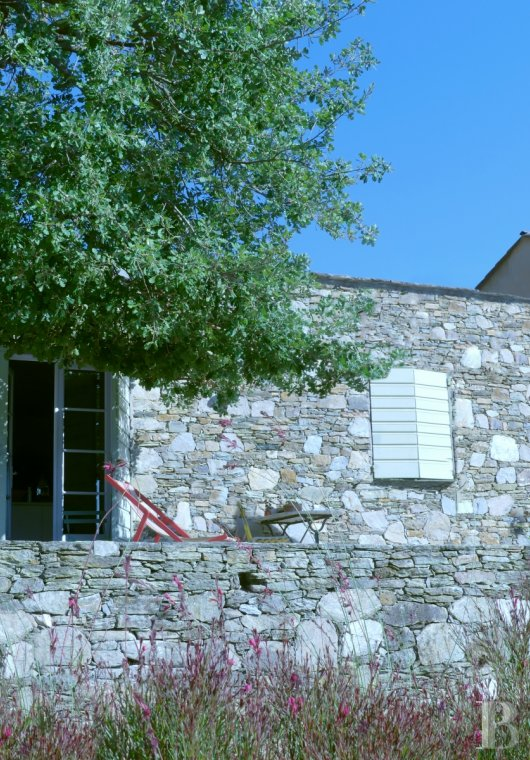 character properties France corse vinegrower s - 3