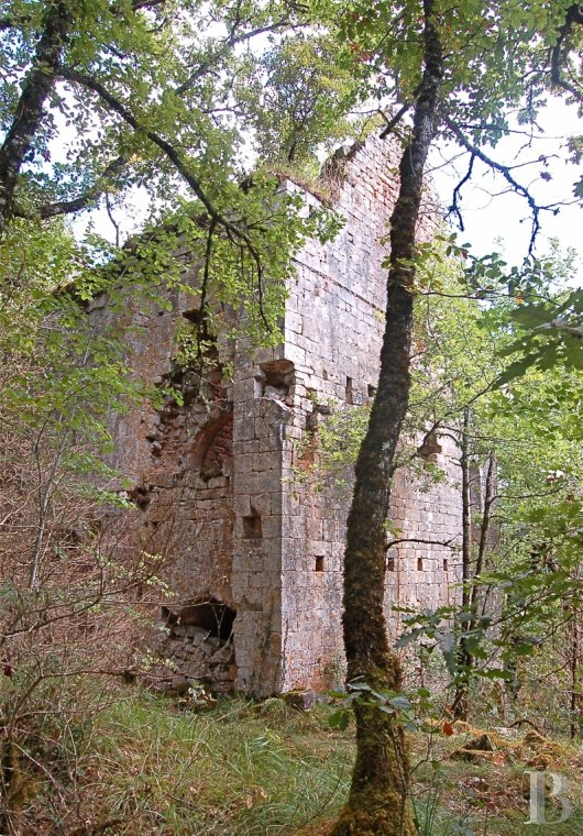 Historic buildings for sale - midi-pyrenees - The overgrown, listed vestiges of an 11th & 12th century fortified village  where the Quercy and Périgord regions meet the area around Agen