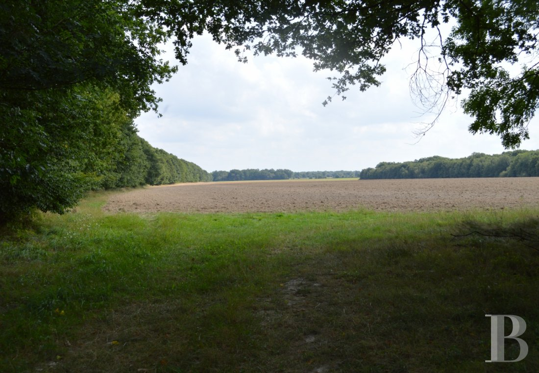 hunting grounds for sale France center val de loire hunting grounds - 1