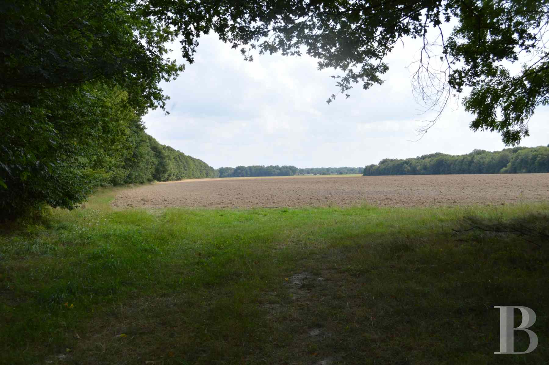 hunting grounds for sale France center val de loire hunting grounds - 1 zoom