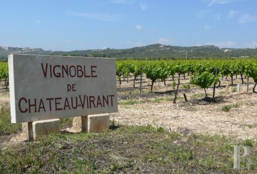 A welcoming place of production and tastings surrounded by vineyards and olive trees in Provence, not far from Aix and Marseille - photo N°14