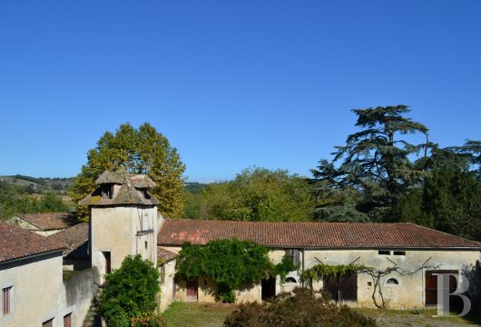 chateaux for sale France aquitaine   - 25