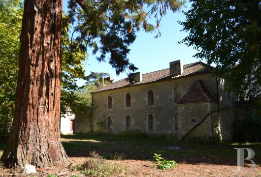 chateaux for sale France aquitaine   - 28