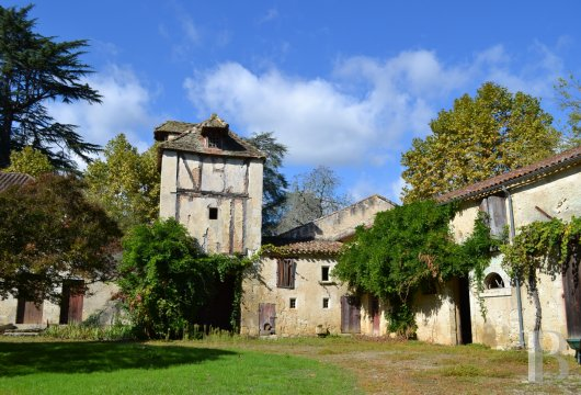 chateaux for sale France aquitaine   - 24