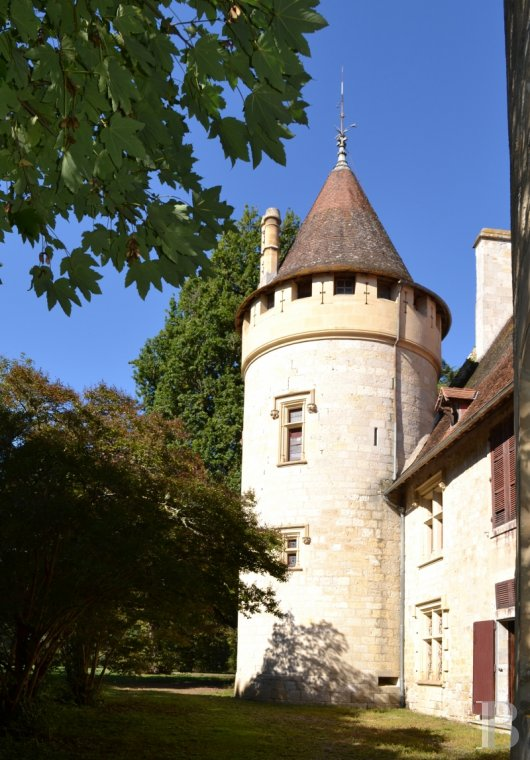 chateaux for sale France aquitaine   - 7