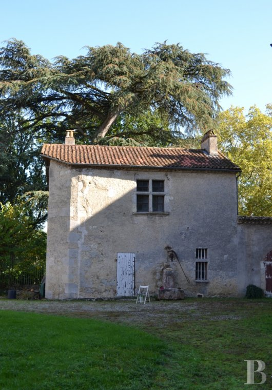 chateaux for sale France aquitaine   - 23