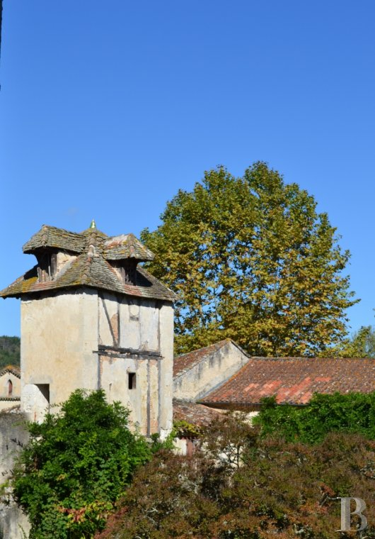 chateaux for sale France aquitaine   - 26