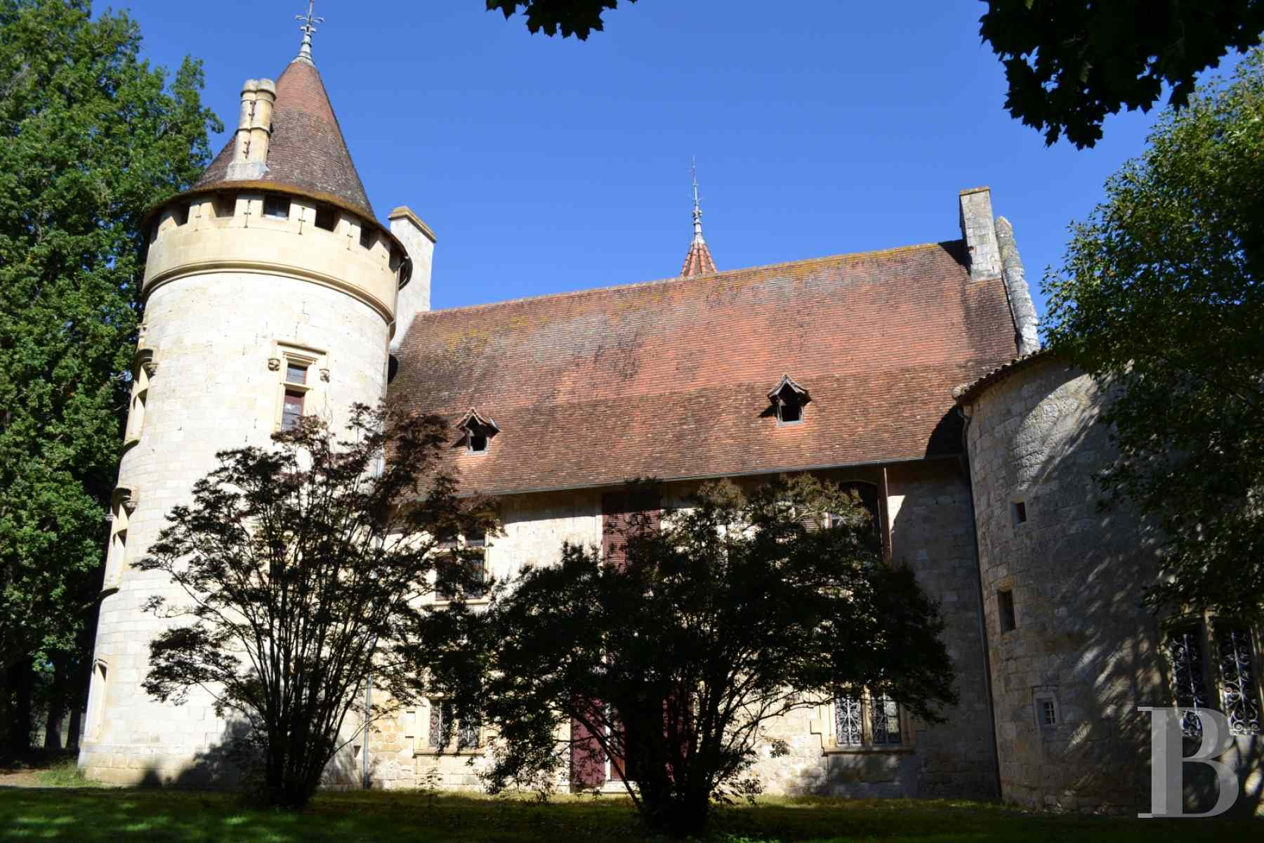 chateaux for sale France aquitaine lot et - 4 zoom