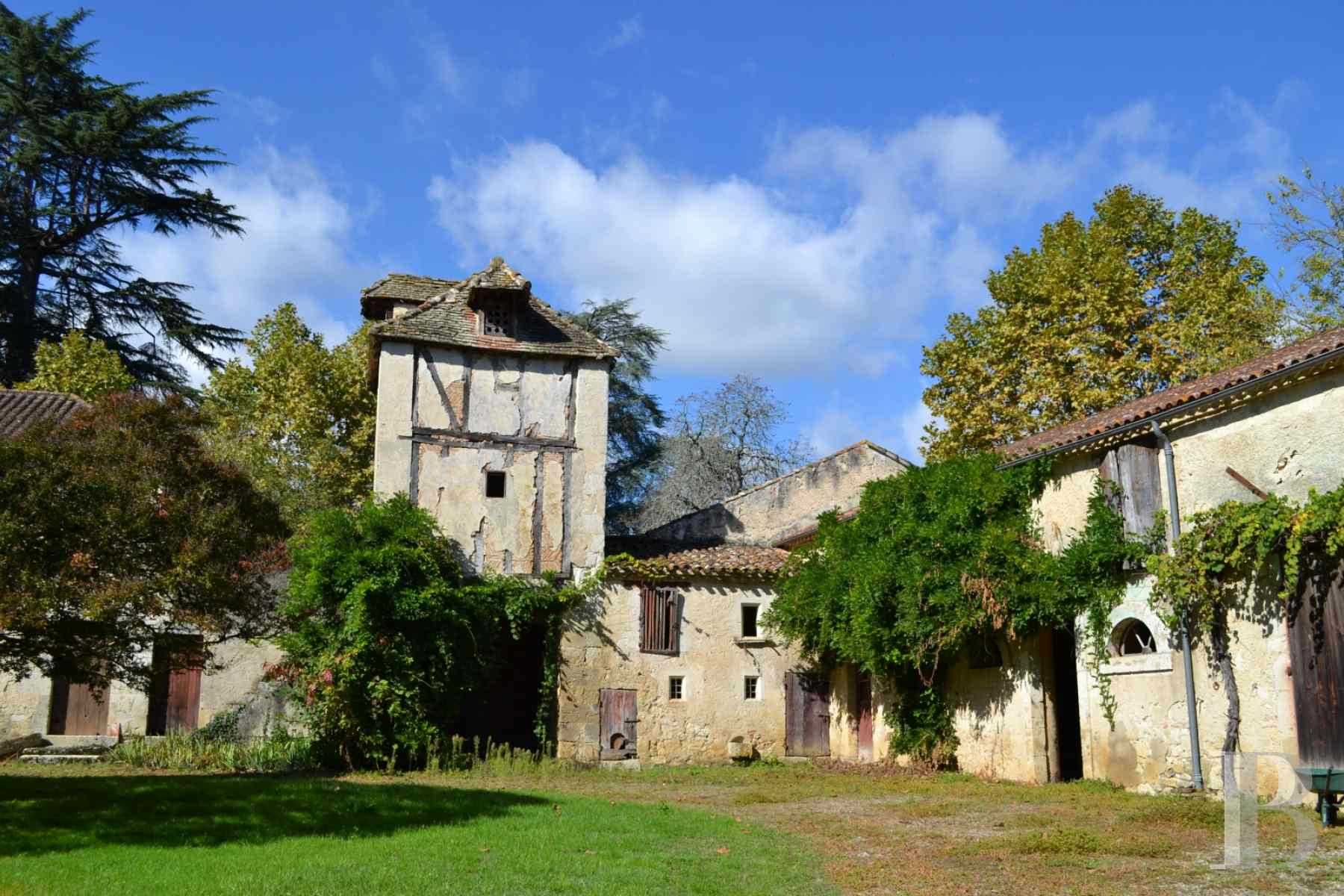 chateaux for sale France aquitaine lot et - 24 zoom