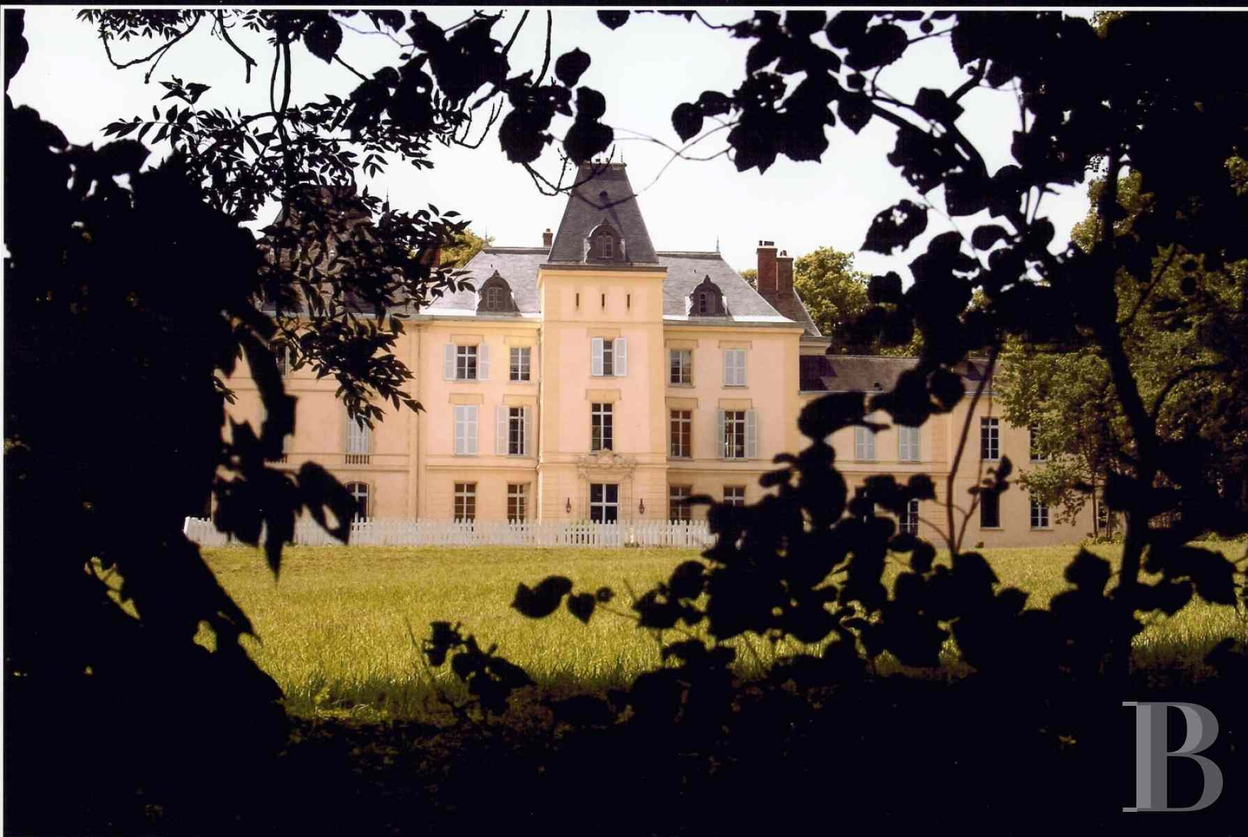 chateaux for sale France ile de france castel 17th - 4 zoom