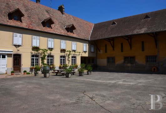chateaux for sale France alsace   - 14