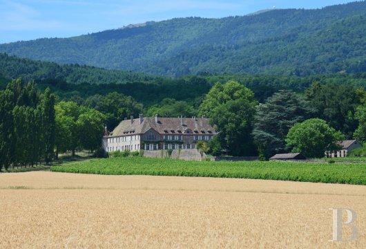 vineyards for sale in France