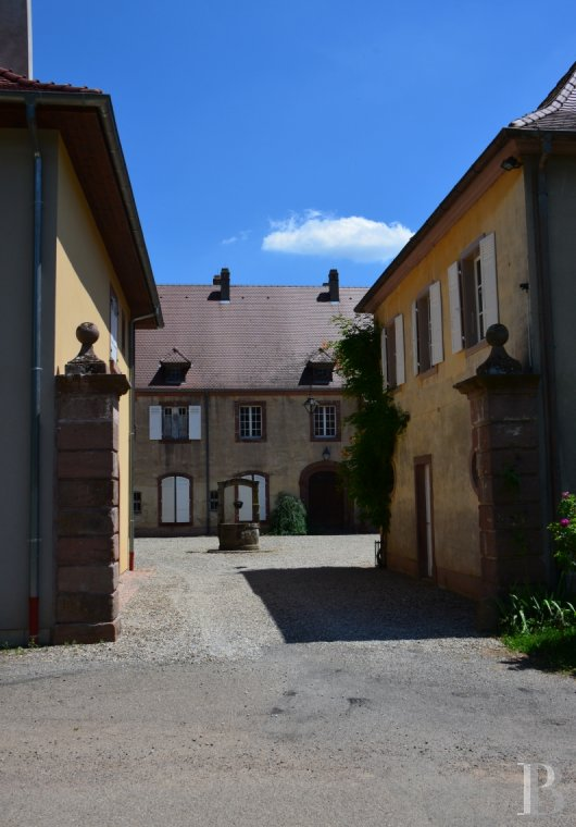 chateaux for sale France alsace 3731  - 3