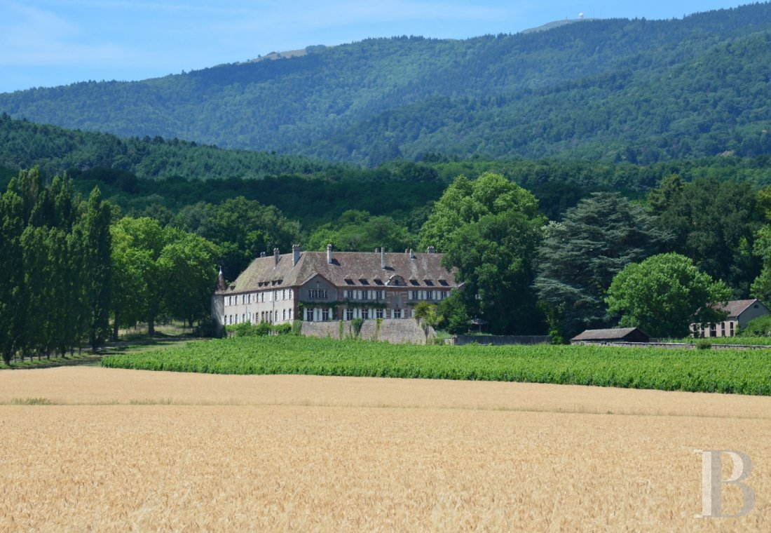 chateaux for sale France alsace   - 1