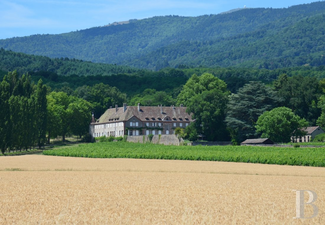 chateaux for sale France alsace 3731  - 1