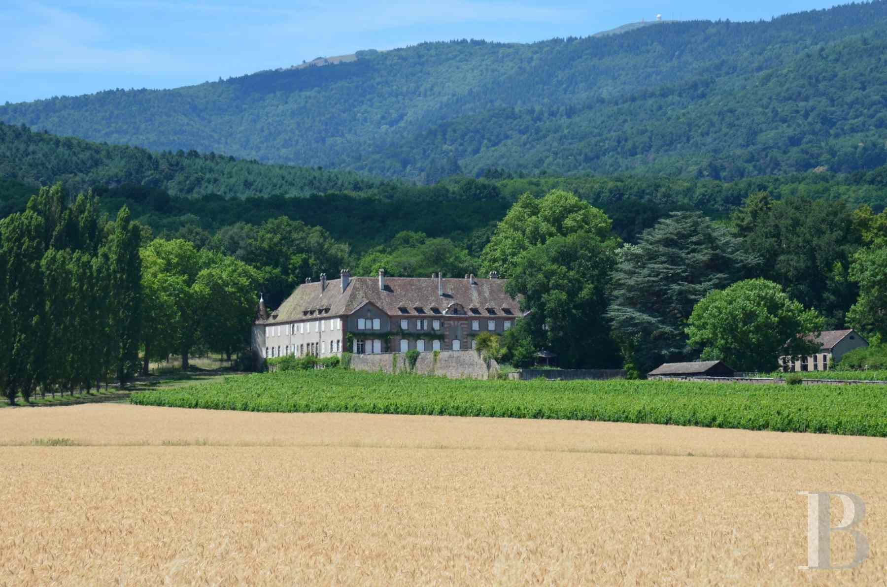 chateaux for sale France alsace 3731  - 1 zoom
