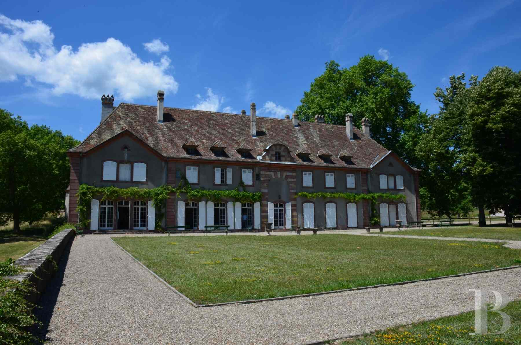 chateaux for sale France alsace 3731  - 2 zoom