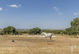propriete agricole - 4