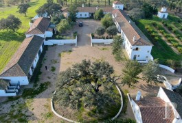 A 170 h property, used for both farming and tourist purposes,  in Castro-Verde between the towns of Beja and Almodôvar, in the Lower Alentejo ...