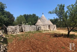 "A 6,400 m² plot of building land and a traditional, dry stone ""trullo""  just a few kilometres from Ostuni, 20 minutes from Brindisi airport"