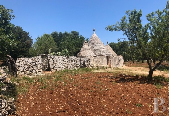 "A 6,400 m² plot of building land and a traditional, dry stone ""trullo"" <br/>just a few kilometres from Ostuni, 20 minutes from Brindisi airport"