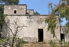 house casale - 3