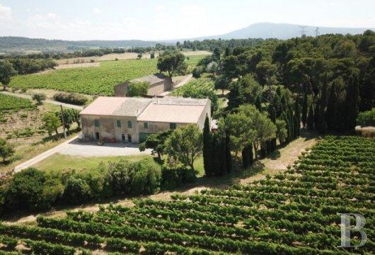 domaine viticole - 3